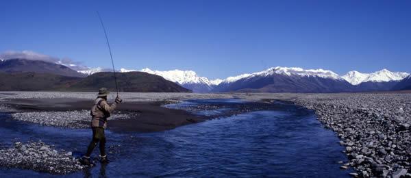 Fishing Charters NZ